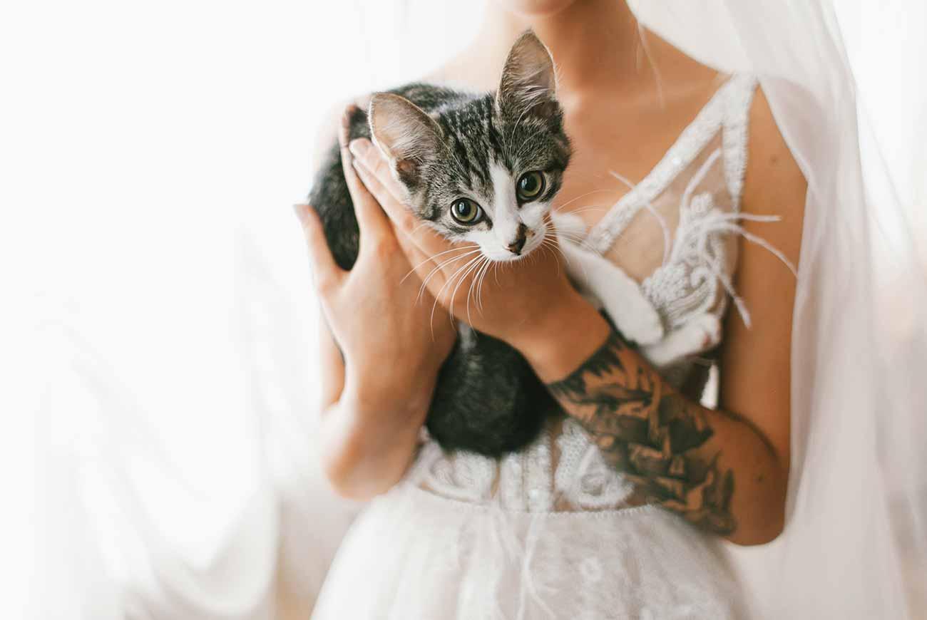 Hochzeit_Fotograf_1300x870px_4